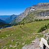 Hiker viewing Hidden Lake at a viewpoint along the Hidden Lake Nature Trail