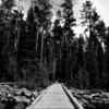 Footbridge across String Lake