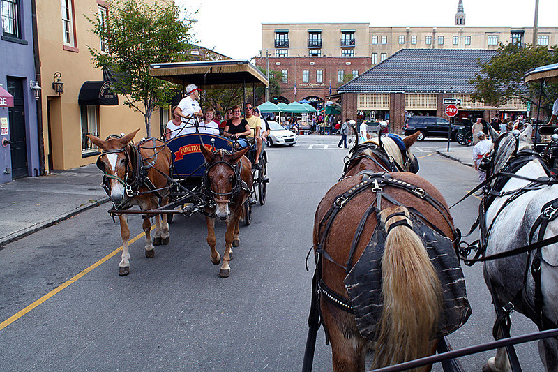 Beginning the carriage tour