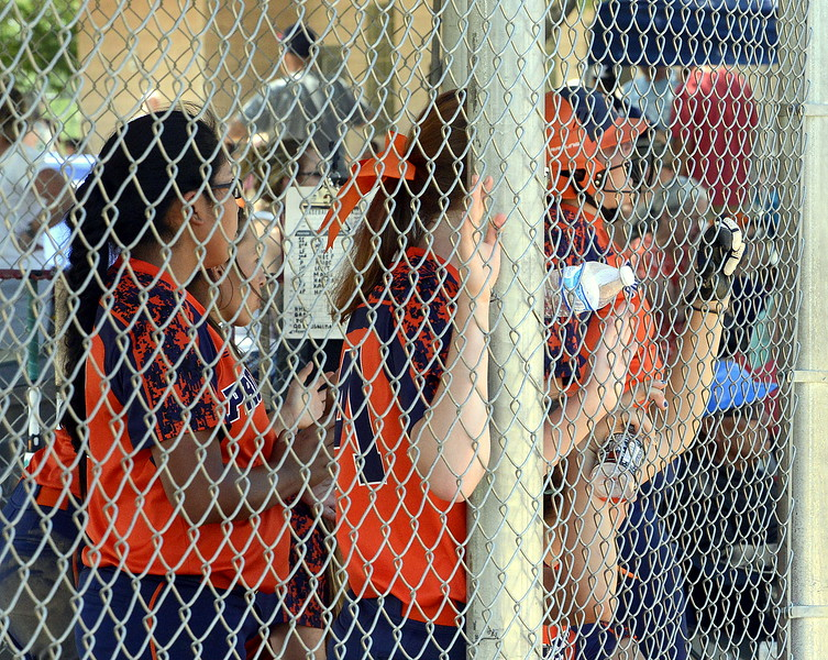 Pro Swing Orange players line the dugout fence as they cheer on their teammate at the plate in Saturday's game with Colorado Altitude at the USSSA Mountain States Championships at the Barnes complex. (Mike Brohard/Loveland Reporter-Herald)