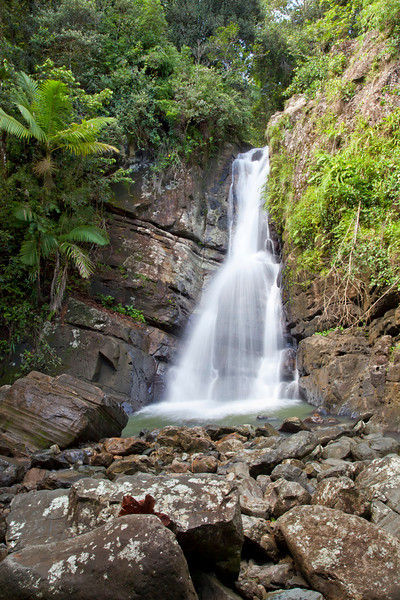La Mina Falls in the Caribbean National Forest of El Yunque