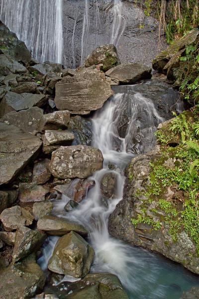 La Coca Falls in the Caribbean National Forest of El Yunque