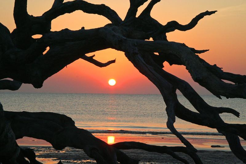 Drifwood Beach at Sunrise