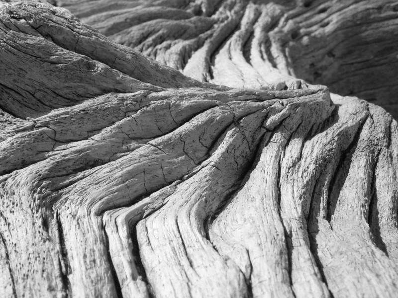 Aged Driftwood