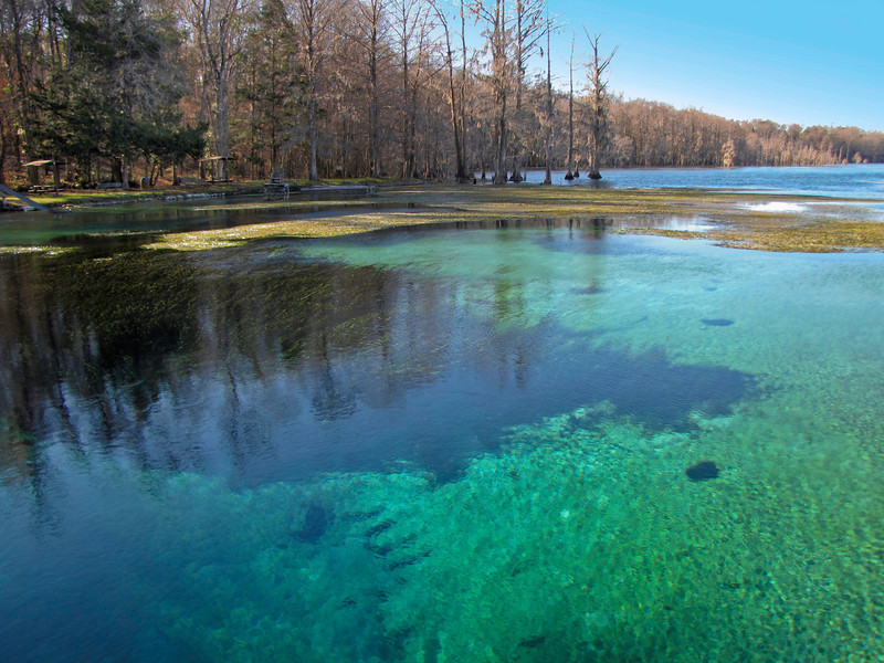 Jackson Blue Springs near Marianna, Florida