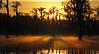 Sunrise at Banks Lake, Lakeland, Georgia