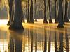 Sunrise at Banks Lake, Lakeland, GA