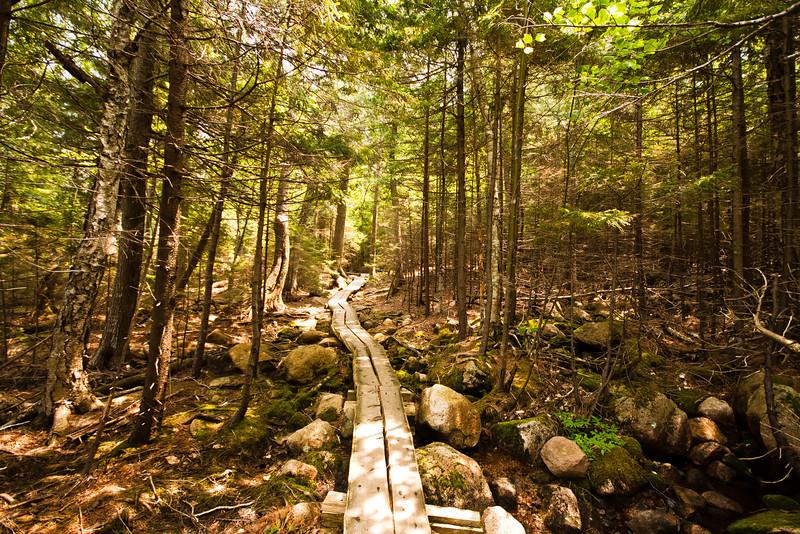 Jordan Pond, Acadia