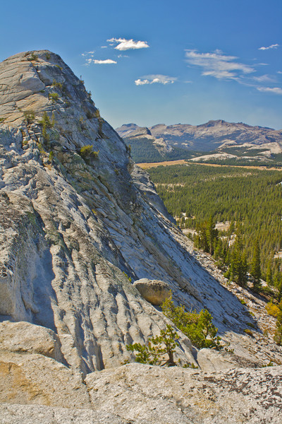 Near the Tioga Pass, Yosemite
