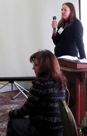 Community Renewal's Shelley Ryan Gray speaks as Lynn Bryan looks on.