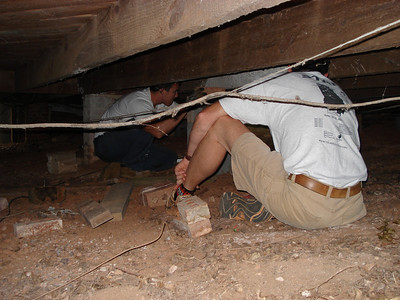 Assessing needs under the floor. ck