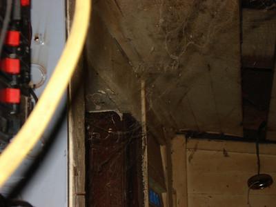 Cobwebs in storage area. ck