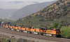 BNSF 7754, 7702, 7770, 7731, 7768, 6995, 135, 7762 & 6682, Cajon, California,Tues 30 April 2013 1 - 0846.  The nine locos climbing Main 1 are GE ES44DCs (77xx), ES44C4 (6995 & 6682) & EMD GP60M (135).