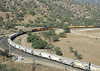 BNSF 6955, 7020 & 1087, Tehachapi loop, California, Wed 1 May 2013 1 - 0855.  A northbound BNSF manifest descends past the end of Walong siding and approaches the stationary UP...