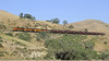 BNSF 6839, 4557, 4668 & 713, approaching Caliente, California, Thurs 2 May 2013 - 0837.  Here are three shots of a very long grain train starting to descend the Caliente horseshoe as it heads north from Bealville.  On the point were a GE ES44C4 with three C44-9Ws behind.  Besides these four locos there were...