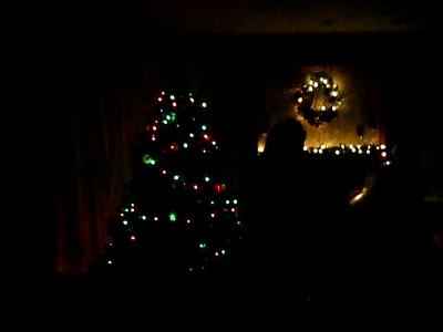 Dec2010a 010