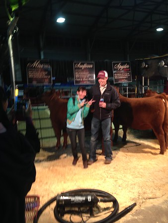 Fort Worth Stock Show and PRCA rodeo, Jan 2014