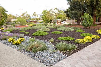 UUCPA Front Yard/Garden 21April2016