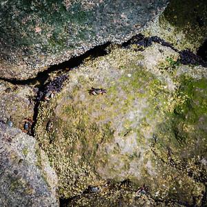 Misssion Rock Rocks