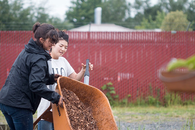 The Public Health Dawgs volunteer at the UW farm on May 21st, 2016.  Public Health Dawgs (The PHDs) are a diverse and engaged group of students in the Public Health Major. PHDs, selected through a competitive application process, are tasked with supporting the Major's outreach and recruitment efforts.