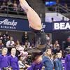 The Washington Huskies host the OSU Beavers in a meet held at Alaska Airlines Arena, Hec Edmunson Pavilion, Seattle, Washington United States 2018-02-10 By: Natassia Stelmaszek