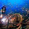 Cargo Wreck @ Lang Tengah Island, Malaysia