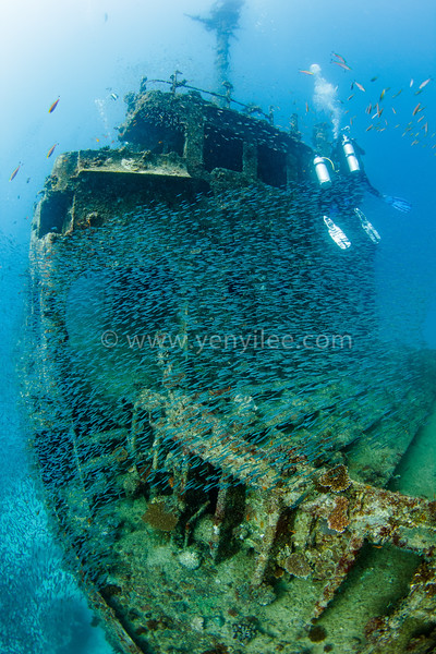 Wreck Exploration (沈船探險) @ Kudhi Maa Wreck, South Ari Atoll, Maldives (馬爾地夫 南亞里環礁)