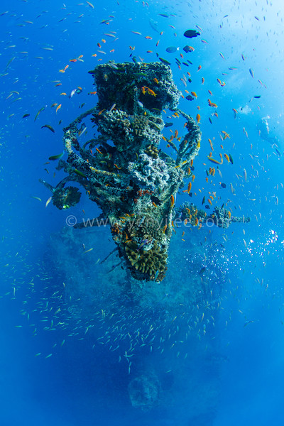 Maldives - The Last Paradise On Earth