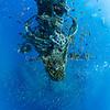Underwater Paradise (水下天堂) @ South Ari Atoll, Maldives (馬爾地夫 南亞里環礁)