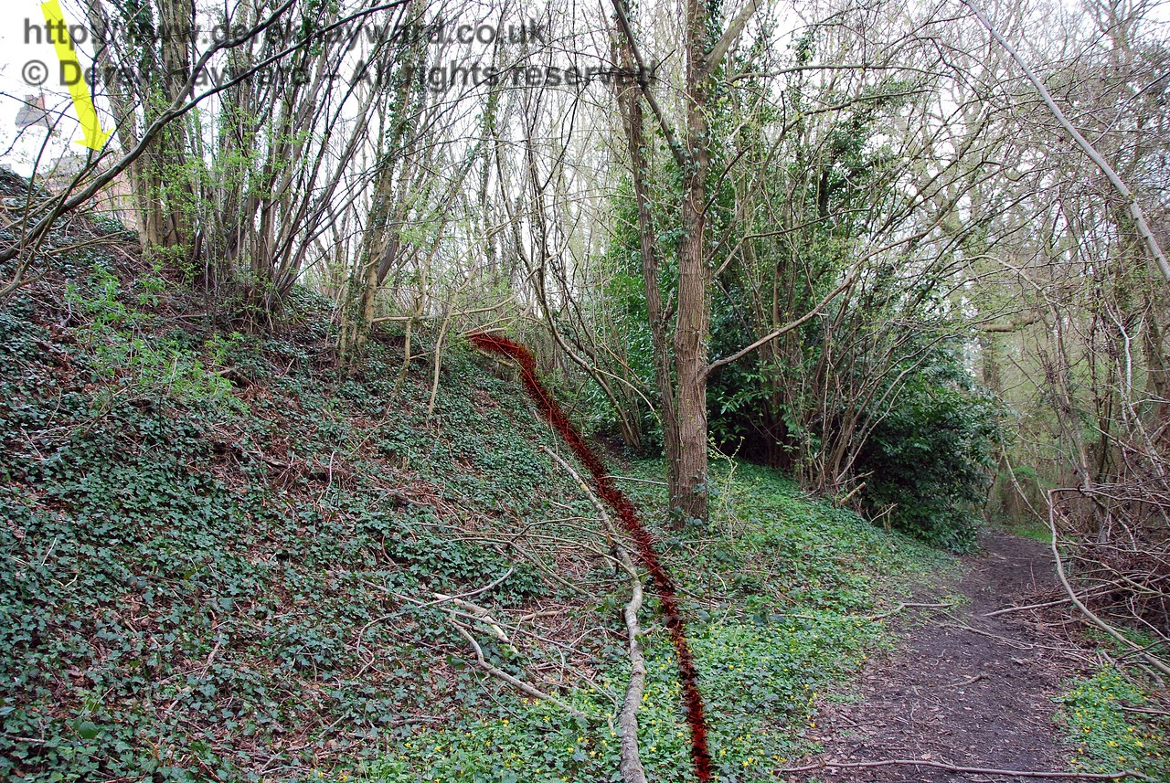 This view, taken from the public footpath that runs parallel to the station on the west side shows the route of the old path to the abandoned northbound platform (highlighted in red).  This path has now almost disappeared in the undergrowth.  The yellow arrow shows the station building above, on the southbound platform. In the early years of the station, when it was operating with two platforms, this path would have provided a quicker route to Markbeech village and Cowden Pound. 10.04.2008