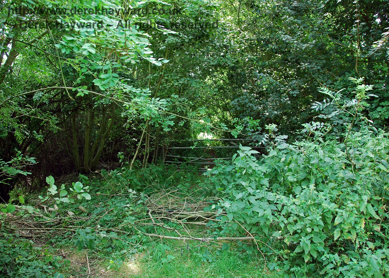 In contrast to the well-maintained farm track that leads east, this is the view west from the Iron River bridge.  The former track bed is blocked by a gate and impassable as a consequence of heavy undergrowth. 27.07.2008