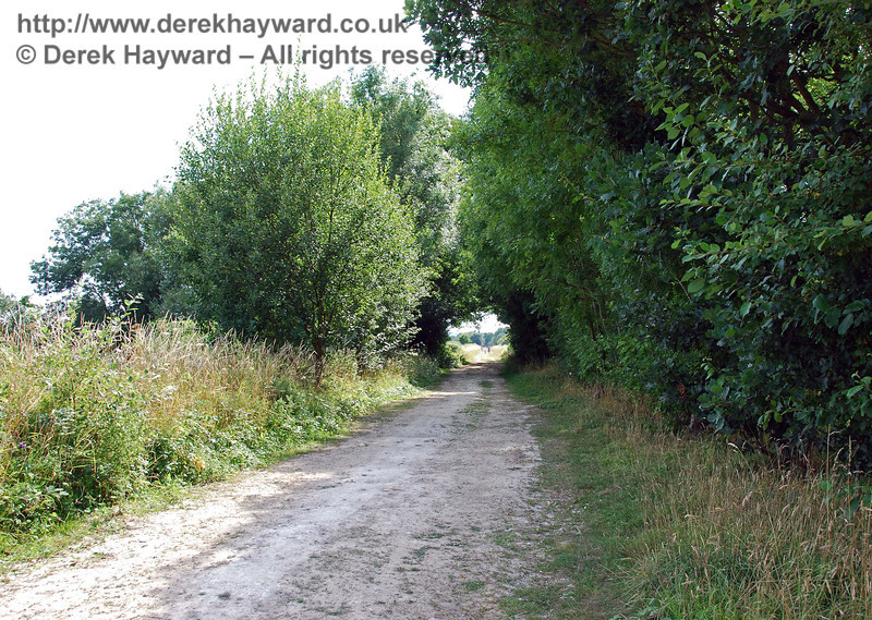 Looking back west, through the trees that border Bevern Stream.  The trees and bushes along the stream form a useful wildlife corridor. 27.07.2008