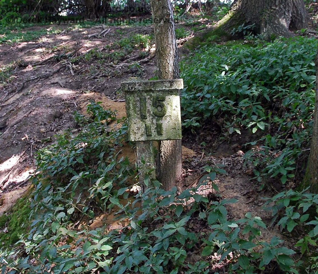 Proof that the railway passed this way is provided by this milepost in the undergrowth. 27.07.2008