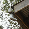 Downspout and gutter at Bbanda R/C.