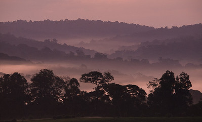 Sunrise from Lodge near Kibale Forest NP