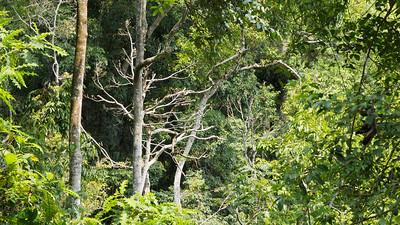 Lake Nkuruba Nature Reserve