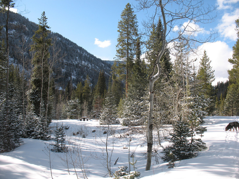 Ledgefork Campground