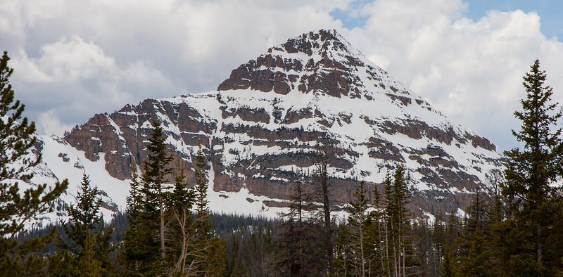North Face Reid's Peak