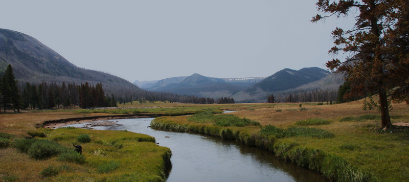 East Fork of the Bear River