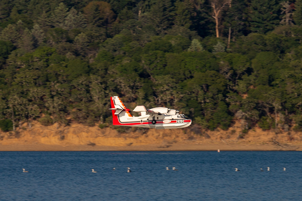 . Flying above the waters of Lake Mendocino. Chris Pugh-Ukiah Daily Journal.