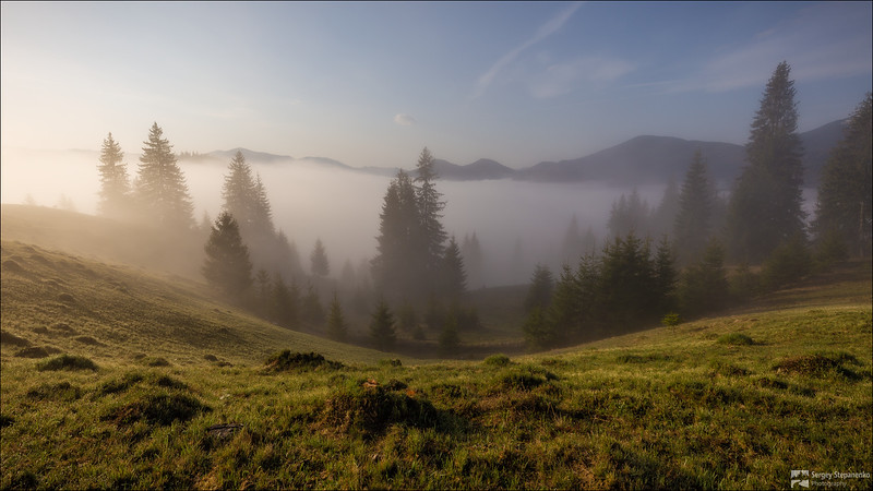 Morning in the Carpathians | Утро в Карпатах