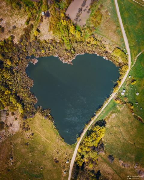 The Heart   Сердце