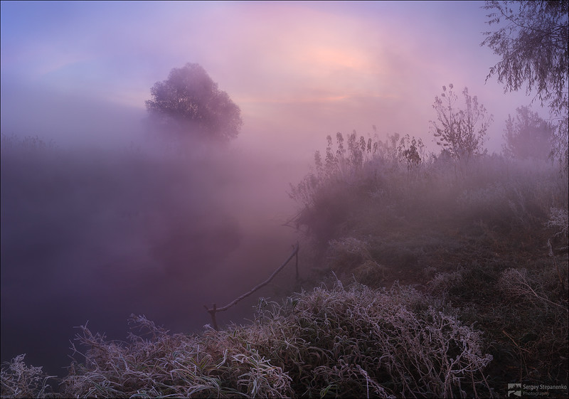The Lured Spot | Прикормленное место