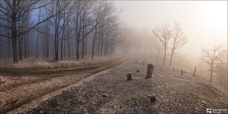 March Fogs | Мартовскими туманами