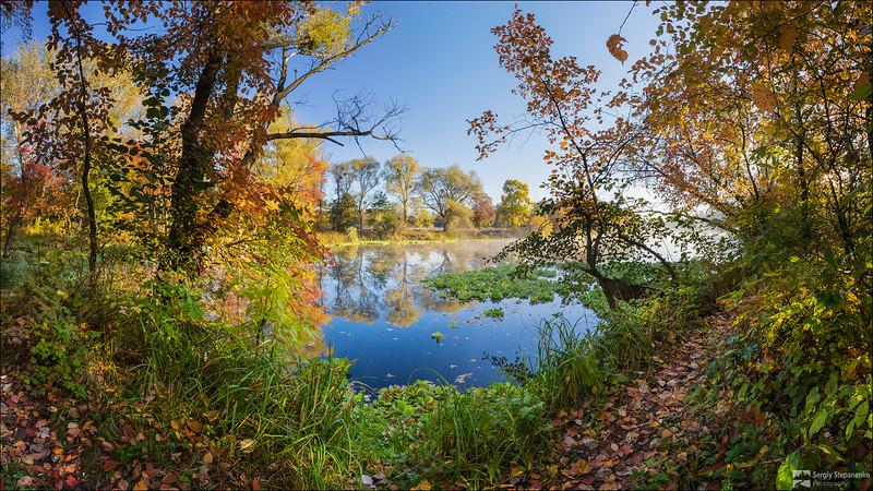 Golden River Banks | Золотые берега