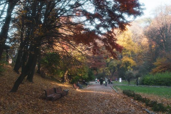 Stryiskyi Park bliss