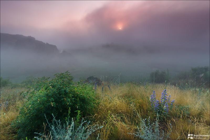Morning in a Fairy Tale   Утро в сказке