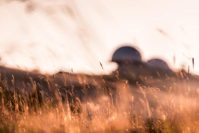 Alien Landscapes #47-Bφ