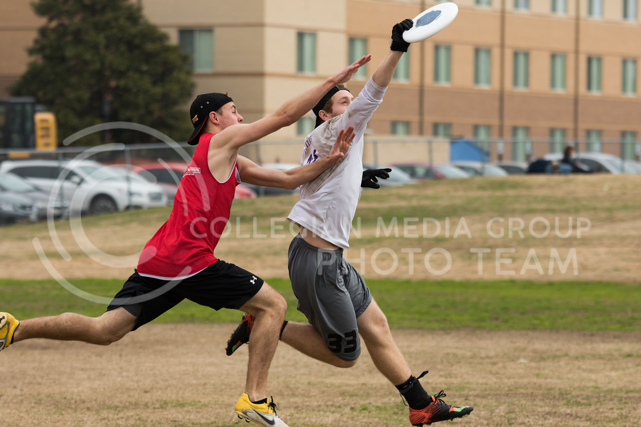 Sophomore in finance, Darien Parr makes a catch at the K-State Wizards' Ultimate Frisbee tournament in Denton, Texas on Feb. 5, 2017. (John Benfer | Royal Purple)