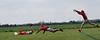 DSC_0654-combo